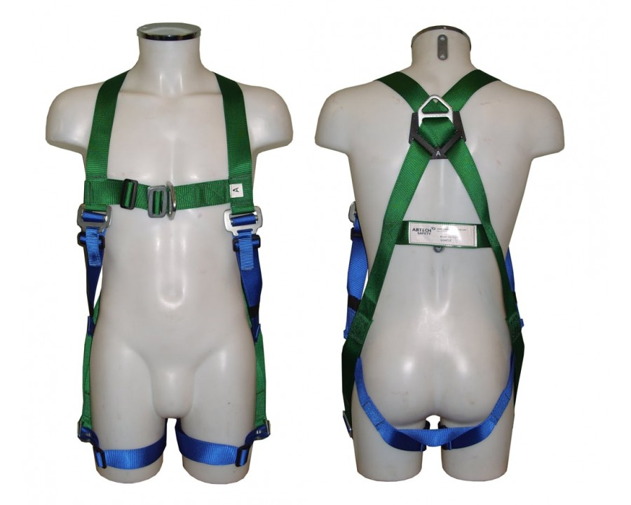 Abtech Safety Two Point Harness AB20