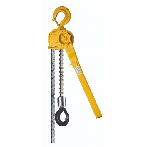 C85 Pul-Lifts® With Roller Chain
